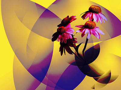 Purple Coneflowers Poster by Patricia Motley
