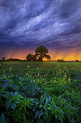 Quietly Drifting By Poster by Phil Koch