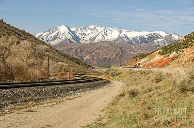 Railroad Tracks With An S-curve Poster by Sue Smith