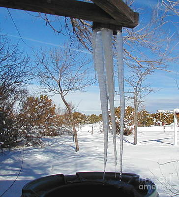 Rain Barrel Icicle Poster by Diana Dearen
