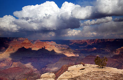 Rain Over The Grand Canyon Poster by Mike  Dawson