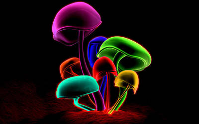 Rainbow Mushrooms Poster by Jovemini ART