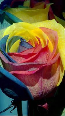 Rainbow Of Love 2 Poster by Karen Musick