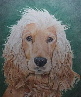 Ralph The Cocker Spaniel Poster by Biophilic Art