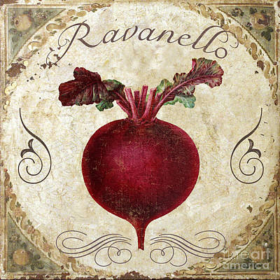 Ravanello Radish Poster by Mindy Sommers