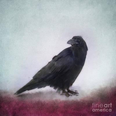 Raven Poster by Priska Wettstein