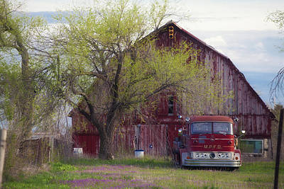 Red Barn Red Truck Poster by Toni Hopper