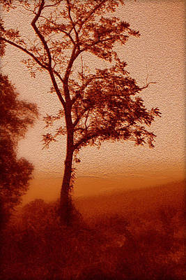 Red Dawn Poster by Linda Sannuti