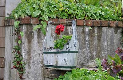 Red Geranium  Poster by Image Takers Photography LLC - Carol Haddon