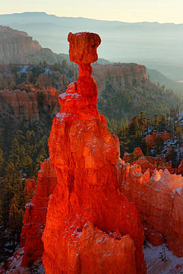 Red Glow Of The Sunrise On Thor's Hammer In Bryce Canyon Poster by Pierre Leclerc Photography