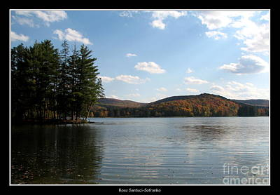 Red House Lake Allegany State Park Ny Poster by Rose Santuci-Sofranko