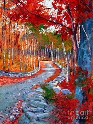 Red Maple Road Plein Aire Poster by David Lloyd Glover