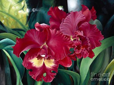 Cattleya Orchids Poster by Wendy Galletta