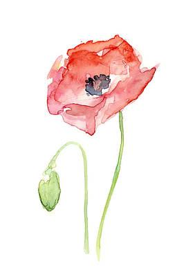 Red Poppy Poster by Olga Shvartsur