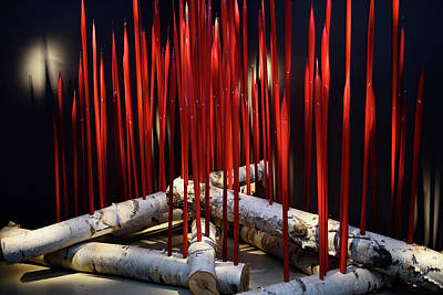 Red Reeds On Logs Chihuly Art Glass On Ontario Birch Trees Rom T Poster by Reimar Gaertner