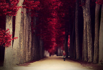 Red Surreal Path In A Park In Paris Poster by Sandra Rugina