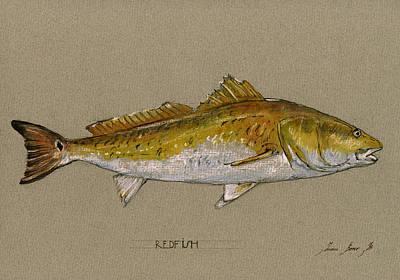Redfish Painting  Poster by Juan  Bosco