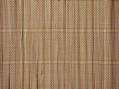 Reed Lining Texture Poster by Miroslav Nemecek