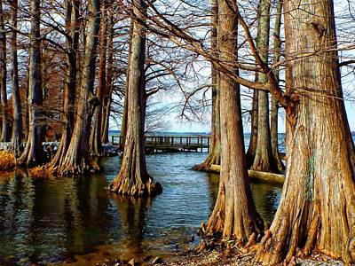 Reelfoot In Winter II Poster by Julie Dant