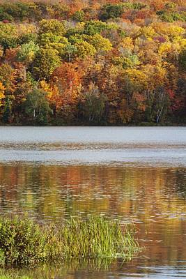Reflection Of Autumn Colors In A Lake Poster by Susan Dykstra