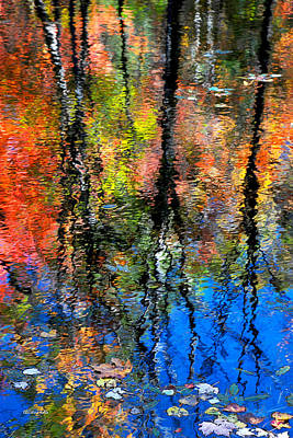 Reflection Of Blue Sky And Autumn Maples Poster by Christina Rollo