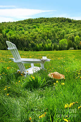 Relaxing On A Summer Chair In A Field Of Tall Grass  Poster by Sandra Cunningham