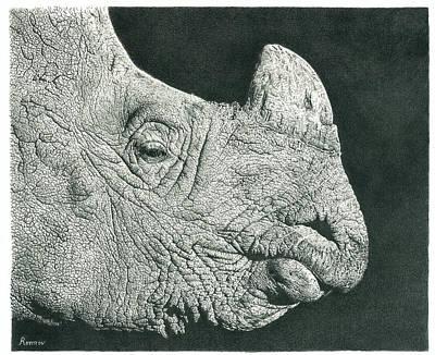 Rhino Pencil Drawing Poster by Remrov
