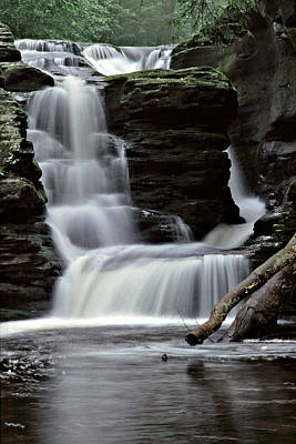 Ricketts Glen Falls 021 Poster by Scott McAllister