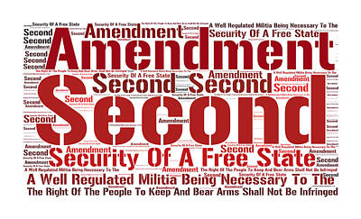 Right To Bear Arms 8 Poster by Cindy Nunn