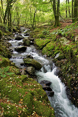 River Lyd On Dartmoor Poster by Pete Hemington