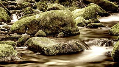 Roaring Fork Mossy Rocks - Sepia Poster by Stephen Stookey