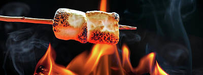 Roasting Marshmallows Over Campfire Horizontal Banner Poster by Susan Schmitz