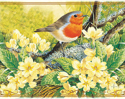 Birdwatching Poster featuring the digital art Robin Spring by John Francis