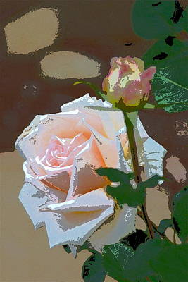Rose 112 Poster by Pamela Cooper