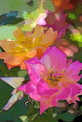 Rose 114 Poster by Pamela Cooper