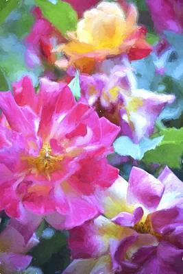 Rose 329 Poster by Pamela Cooper