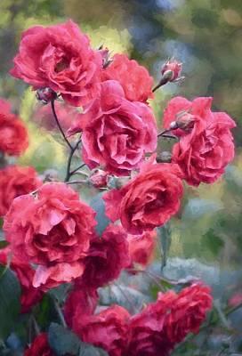Rose 348 Poster by Pamela Cooper