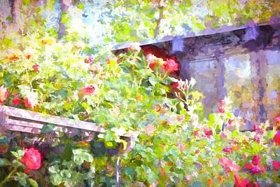 Rose 351 Poster by Pamela Cooper