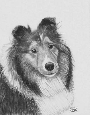 Rough Collie Poster by AniK