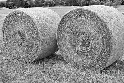 Round Hay Bales Black And White  Poster by James BO  Insogna