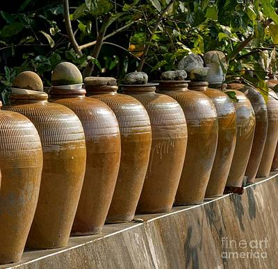 Row Of Pickling Jars Poster by Yali Shi