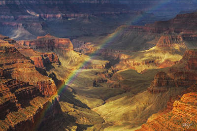 Royal Rainbow Poster by Peter Coskun