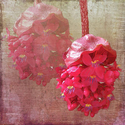 Ruby Colored Orchid Poster by Rosalie Scanlon