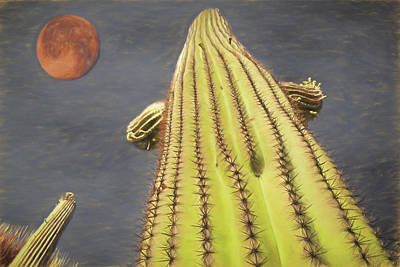 Saguaro And Blood Moon Poster by Donna Kennedy