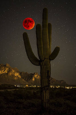 Saguaro And The Super Bloodmoon Poster by Chuck Brown