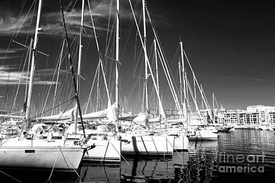Sailboats Docked Poster by John Rizzuto