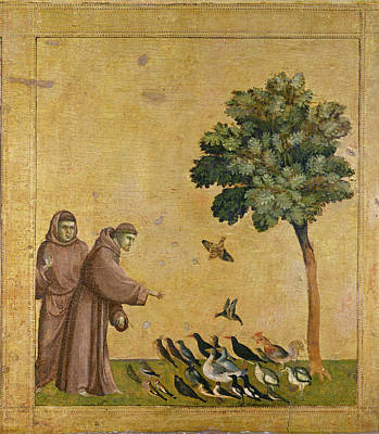 Saint Francis Of Assisi Preaching To The Birds Poster by Giotto di Bondone