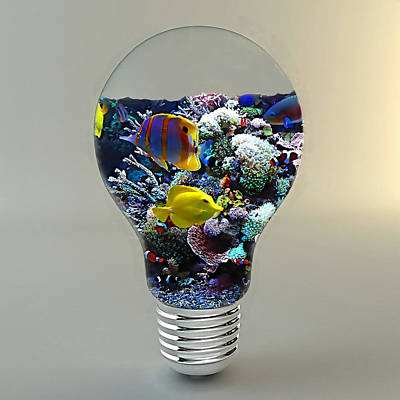 Saltwater Aquarium Light Bulb Poster by Marvin Blaine