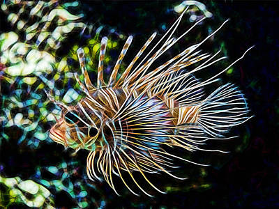 Saltwater Lionfish Poster by Marvin Blaine