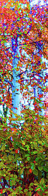 Santa Fe Aspen Forest Tryptic 1				 Poster by Ann Johndro-Collins